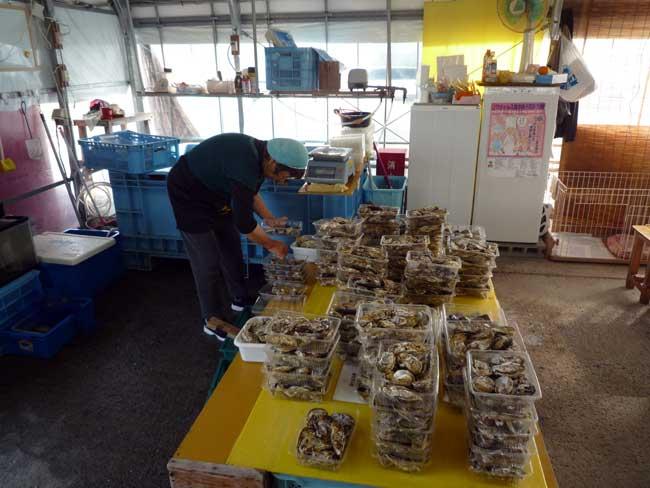 ひろちゃん 加布里漁港の牡蠣