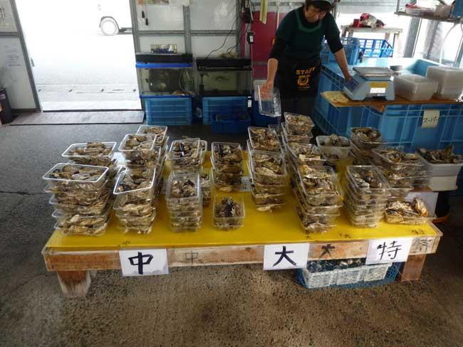 ひろちゃんの牡蠣